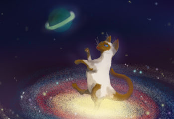 spacecat from the catosphere