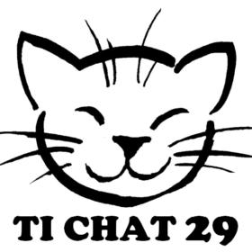 Ti chat 29